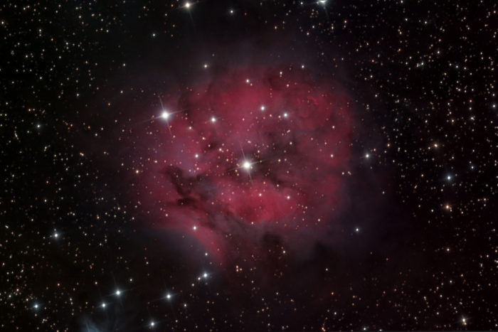 Iamge of the Cocoon nebula taken from my backyard observatory