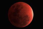 Moon-Eclipse-full