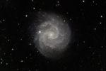 NGC3184